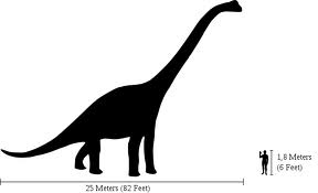 Human v/s Brachiosaurus